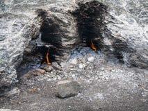Chimaera eternal flame. At Olympos mountain, Turkey Royalty Free Stock Photos
