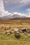 Chimborazo Stock Photography