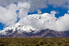 Chimborazo volcano in andean Ecuador Royalty Free Stock Images
