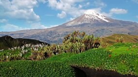 Chimborazo volcano reserve in the andes of Ecuador, ring of fire
