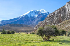 Chimborazo volcano Royalty Free Stock Photography