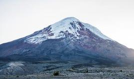 Chimborazo-Vulkan an der Dämmerung Stockbild