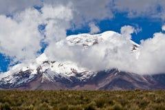 Chimborazo vulkan i andean Ecuador royaltyfria bilder
