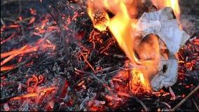Chimenea con el fuego ardiente La leña está mintiendo en la chimenea El fuego está quemando con arranques hermosos de la llama Ci almacen de metraje de vídeo