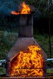 Chimenea con el fuego y el caballo enormes de las llamas reveladoras Foto de archivo