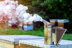 Chimenea de las remolachas Colmenas en las cercanías del concepto del bosque de apicultura Imagenes de archivo