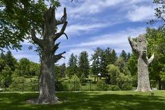 Chimeneas del tronco de árbol del cemento Fotos de archivo libres de regalías