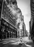 Chimeneas del vapor de Nueva York Imágenes de archivo libres de regalías