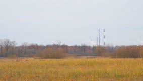 Chimeneas en distancia en el fondo de los prados del otoño almacen de metraje de vídeo