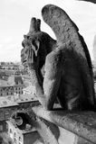 Chimera of the Cathedral of Notre Dame Royalty Free Stock Photos