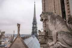 Chimera of the Cathedral Notre Dame de Paris Stock Photography