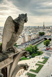 Chimera of the Cathedral of Notre Dame de Paris overlooking the Stock Images