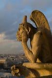 Chimera di Notre Dame immagini stock libere da diritti