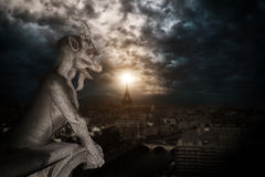 Chimera (gargoyle) of the Cathedral of Notre Dame de Paris Royalty Free Stock Images
