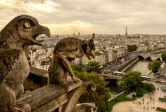Chimera (gargoyle) on the Cathedral of Notre Dame de Paris Royalty Free Stock Photography