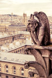 Chimera (gargoyle) of the Cathedral of Notre Dame de Paris Stock Photos