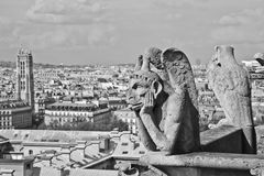 Chimera of Notre Dame 7 Royalty Free Stock Images