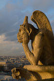 Chimera of Notre Dame Royalty Free Stock Images
