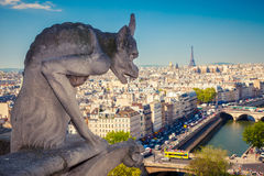 Chimera on Notre Dame Cathedral Royalty Free Stock Photos