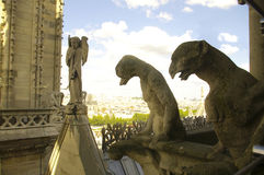 Chimera from Notre Dame Cathedral royalty free stock photo