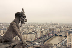 Chimera. Of Notre Dame de Paris Royalty Free Stock Image