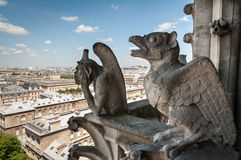 Chimera of Notre Dame Stock Images