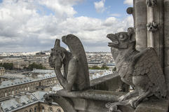 Chimere of Notre-Dame overlooking Paris Royalty Free Stock Photos