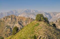 Chimgan στο Ουζμπεκιστάν στοκ φωτογραφία