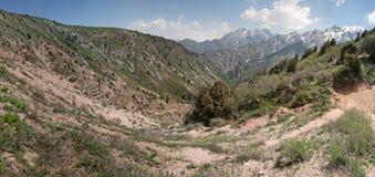 Chimgan mountains, Uzbekistan Stock Photography