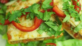 Chimichanga con carne tritata, le verdure ed il formaggio su un orizzontale del primo piano del piatto archivi video