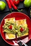 Chimichanga mexicano com mergulho do guacamole Fotos de Stock Royalty Free