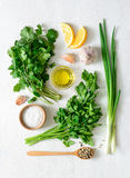 Chimichurri basic ingredients Stock Image