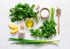 Chimichurri basic ingredients Royalty Free Stock Photography