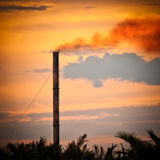 Chimney. A chimney in a factory surrounded by plants, palm and coconut trees Royalty Free Stock Image