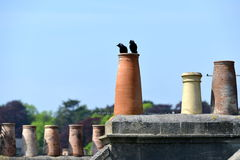 Chimney Pots Royalty Free Stock Photos
