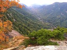 Chimney Rock State Park. Landscape of Chimney Rock State Park in North Carolina, USA Royalty Free Stock Photography