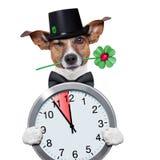 Chimney sweeper dog watch clock. Good luck chimney sweeper dog with hat and clock Stock Photos