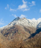 Chimney Tops in snow in smokies Stock Image
