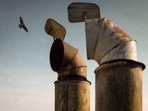 chimneys Стоковая Фотография