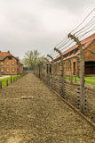 Chimneys of Auschwitz Royalty Free Stock Images