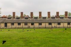 Chimneys of Auschwitz Stock Photography