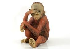 Chimp Stock Photos