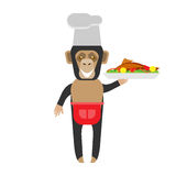 Chimp chef with fish. Illustration of a chimp on a white background Royalty Free Stock Photo