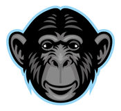 Chimp head Royalty Free Stock Photos