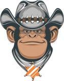 Chimpancé - vaquero Fotos de archivo