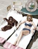 Chimpansee en vrouw het zonnebaden (Alle afgeschilderde personen leven niet langer en geen landgoed bestaat Leveranciersgaranties royalty-vrije stock afbeelding