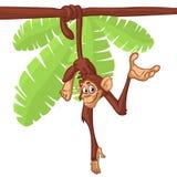 Chimpanzé bonito do macaco que pendura na ilustração simplificada do vetor do ramo cor brilhante lisa de madeira no projeto do es imagens de stock
