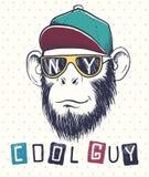 Chimpanzé frais de singe habillé dans des lunettes de soleil Photographie stock libre de droits