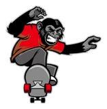 Chimpanze rittskateboard Arkivbild
