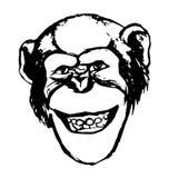 Chimpanzee emotion smile Royalty Free Stock Photography